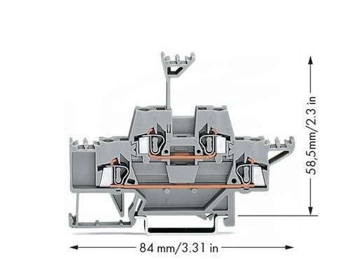 Doorgangsklem 2-etages 5 mm Veerklem Toewijzing: L Grijs WAGO 280-513 50 stuks