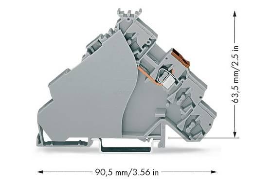 Actorklem 6 mm Veerklem Toewijzing: L Grijs WAGO 280-515 20 stuks
