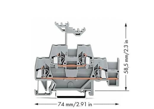 Doorgangsklem 2-etages 5 mm Veerklem Toewijzing: L Grijs WAGO 280-520 50 stuks