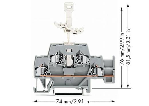 Doorgangsklem 2-etages 5 mm Veerklem Toewijzing: L Grijs WAGO 280-522 50 stuks
