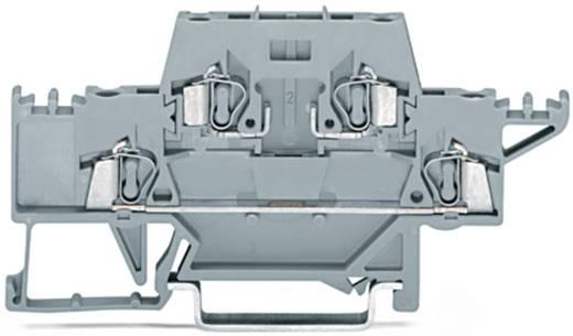 Doorgangsklem 2-etages 5 mm Veerklem Toewijzing: L Grijs WAGO 280-528 50 stuks