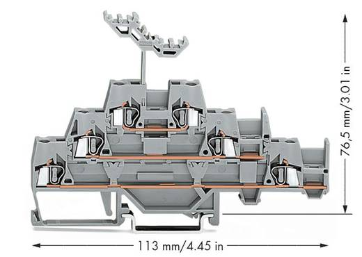 Doorgangsklem 3-etages 5 mm Veerklem Toewijzing: L Grijs WAGO 280-550 40 stuks