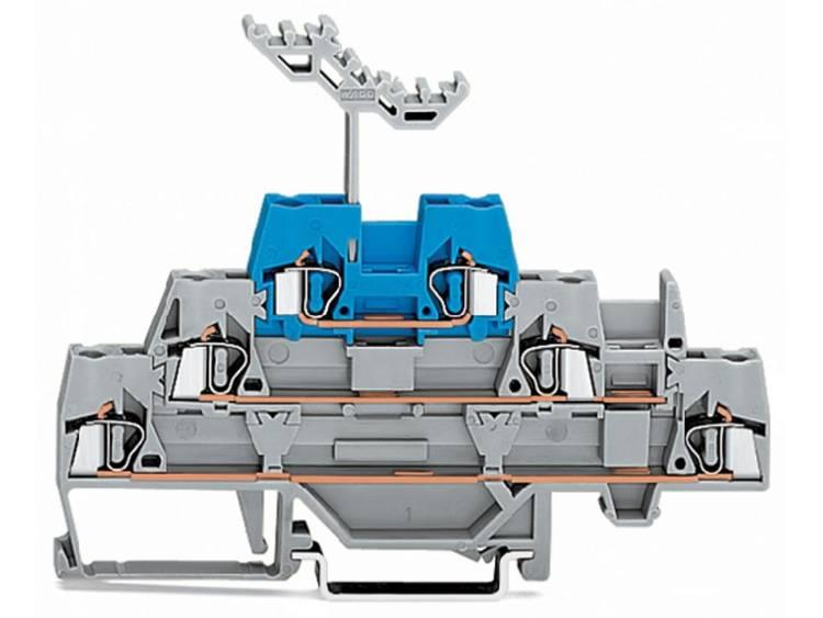 WAGO 280-552 Doorgangsklem 3-etages 5 mm Veerklem Grijs, Blauw 40 stuks