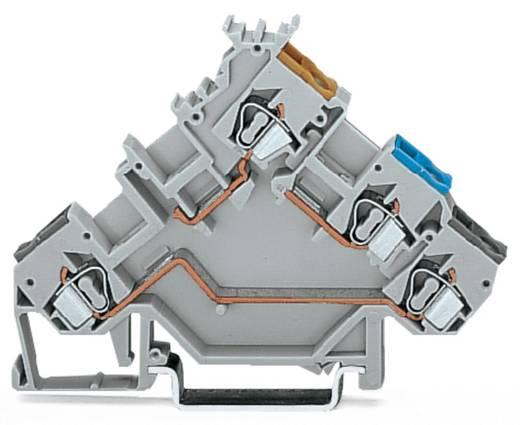 Initiatorklemmen 5 mm Veerklem Toewijzing: L Grijs WAGO 280-553 50 stuks