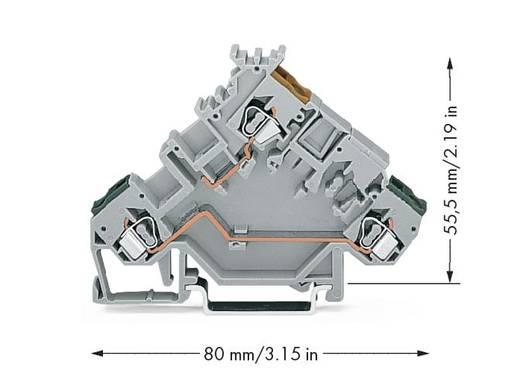 Actorklem 5 mm Veerklem Toewijzing: L Grijs WAGO 280-555 50 stuks