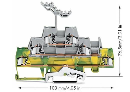 Doorgangsklem 3-etages 5 mm Veerklem Groen-geel, Grijs WAGO 280-557 40 stuks