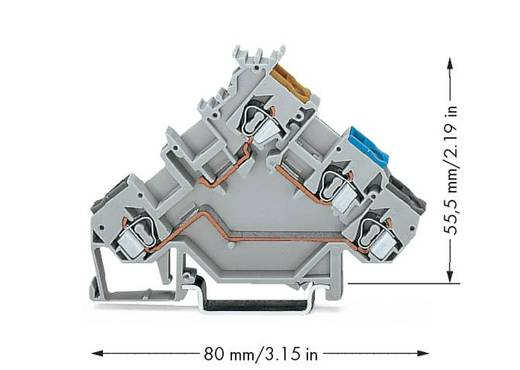Initiatorklemmen 5 mm Veerklem Toewijzing: L Grijs WAGO 280-560 50 stuks