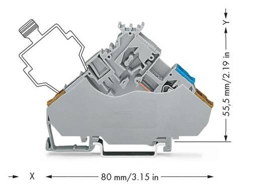 Actorklem 6 mm Veerklem Toewijzing: L Grijs WAGO 280-565/280-319 50 stuks