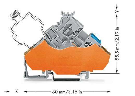 Actorklem 6 mm Veerklem Toewijzing: L Grijs WAGO 280-565/280-321 50 stuks