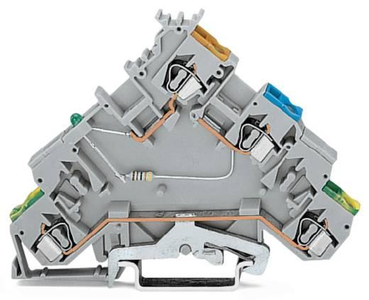 Initiatorklemmen 6 mm Veerklem Toewijzing: L Grijs WAGO 280-577/281-496 20 stuks