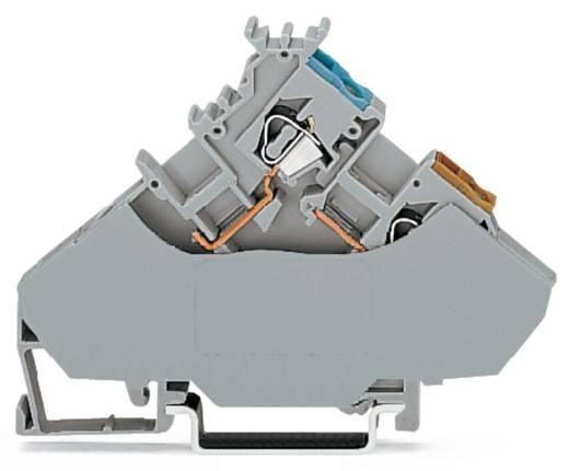 Initiatorklemmen 6 mm Veerklem Toewijzing: L Grijs WAGO 280-567 20 stuks