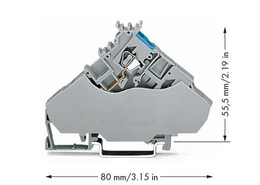 Actorklem 6 mm Veerklem Toewijzing: L Grijs WAGO 280-568 20 stuks