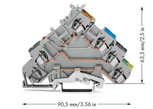 Initiatorklemmen 5 mm Veerklem Toewijzing: L Grijs WAGO 280-570/281-434 50 stuks