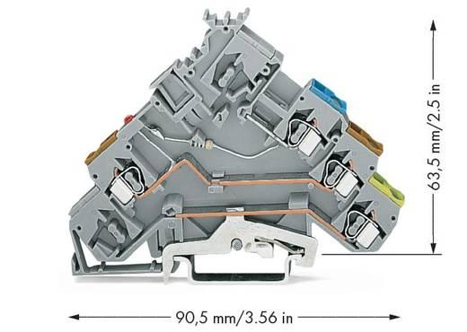 LED-klem 5 mm Veerklem Toewijzing: L Grijs WAGO 280-572/281-434 50 stuks