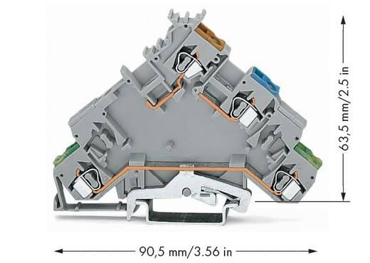 Initiatorklemmen 5 mm Veerklem Toewijzing: L Grijs WAGO 280-574 10 stuks