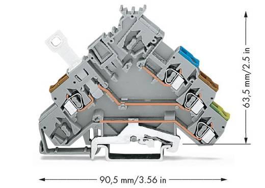 Scheidingsklem 5 mm Veerklem Toewijzing: L Grijs WAGO 280-576 50 stuks