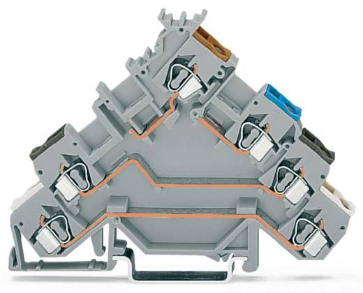 Initiatorklemmen 5 mm Veerklem Toewijzing: L Grijs WAGO 280-580 50 stuks