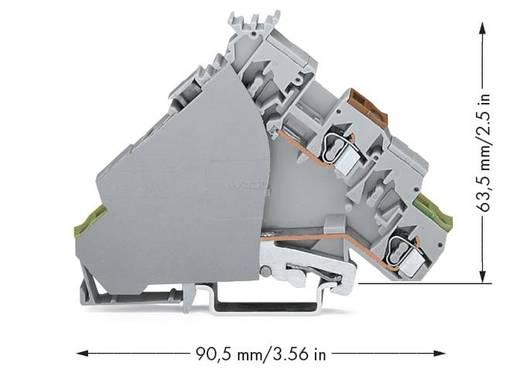 Actorklem 6 mm Veerklem Toewijzing: L Grijs WAGO 280-586 50 stuks