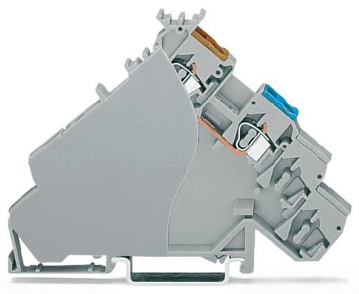 Initiatorklemmen 6 mm Veerklem Toewijzing: L Grijs WAGO 280-587 20 stuks