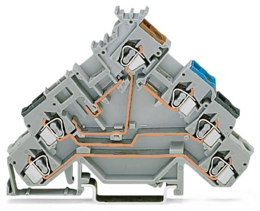 Initiatorklemmen 5 mm Veerklem Toewijzing: L Grijs WAGO 280-588 50 stuks
