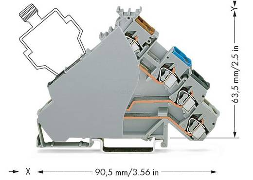 Initiatorklemmen 6 mm Veerklem Toewijzing: L Grijs WAGO 280-588/280-320 50 stuks