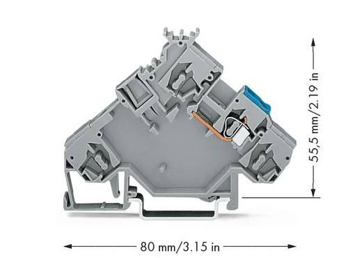 Actorklem 5 mm Veerklem Toewijzing: L Grijs WAGO 280-592 10 stuks