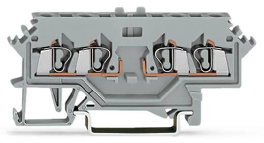 Basisklem 5 mm Veerklem Toewijzing: L Grijs WAGO 280-606 100 stuks