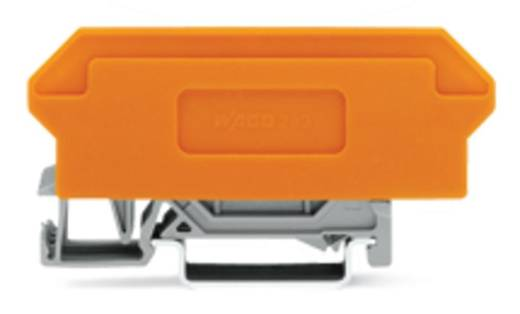 Basisklemblok 5 mm Veerklem Toewijzing: L Grijs WAGO 280-609 1 stuks