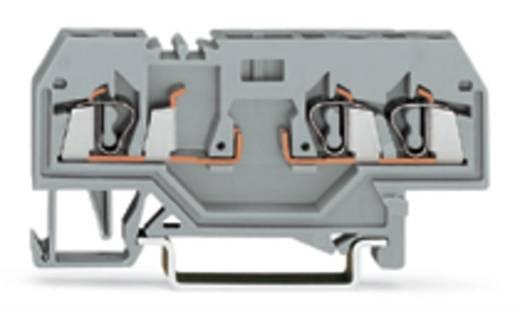 Basisklem 5 mm Veerklem Toewijzing: L Grijs WAGO 280-610 100 stuks