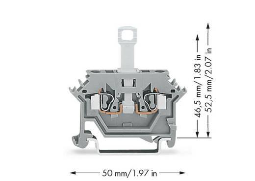 Scheidingsklem 5 mm Veerklem Toewijzing: L Grijs WAGO 280-612 50 stuks