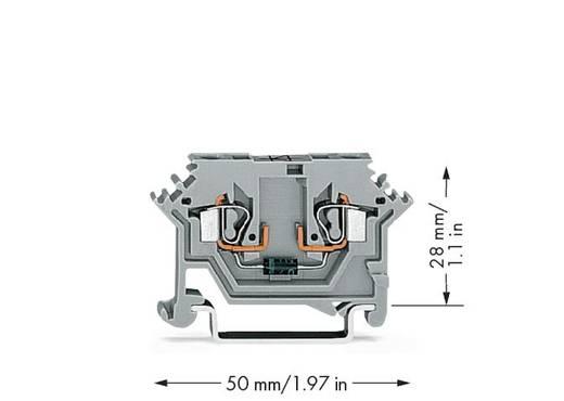 Diodeklem 5 mm Veerklem Toewijzing: L Grijs WAGO 280-613/281-410 100 stuks