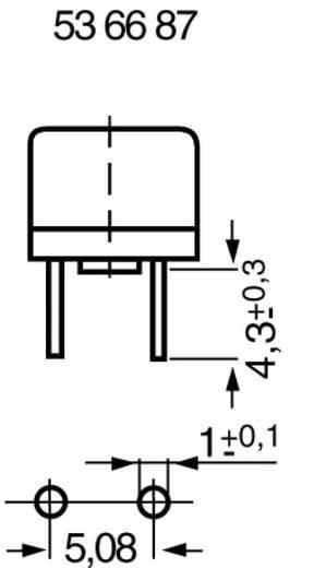 ESKA 887007 Printzekering Radiaal bedraad Rond 0.1 A 250 V Traag -T- 1 stuks