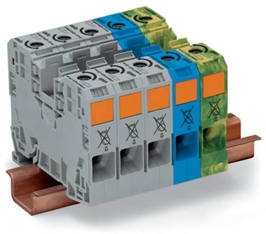 3 faseklem 16 mm Veerklem Grijs, Blauw, Groen-geel WAGO 285-139 1 stuks