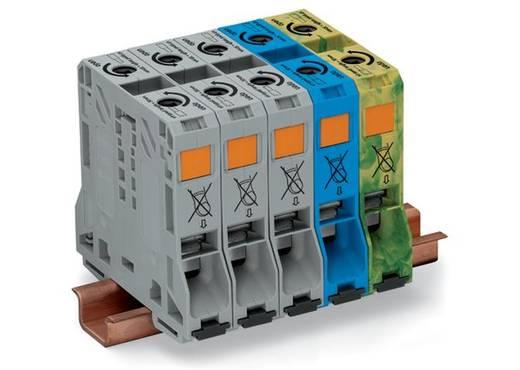 3 faseklem 20 mm Veerklem Grijs, Blauw, Groen-geel WAGO 285-159 1 stuks
