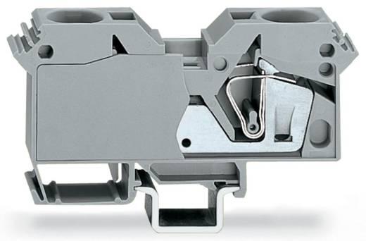 Doorgangsklem 16 mm Veerklem Toewijzing: L Grijs WAGO 285-691 15 stuks