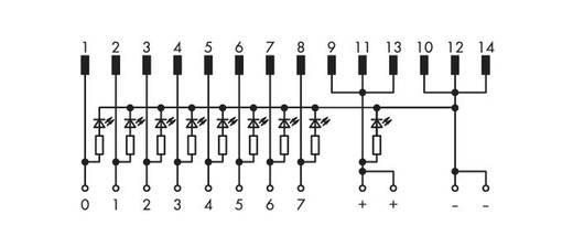 WAGO 289-681 Overdrachtsmodule 8 I / O Inhoud: 1 stuks
