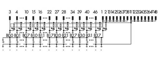 WAGO 289-687 Overdrachtsmodule 32 I / O Inhoud: 1 stuks