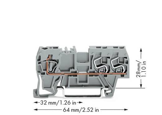 Doorgangsklem 5 mm Veerklem Toewijzing: L Grijs WAGO 290-681 100 stuks