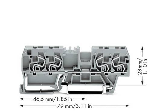 Doorgangsklem 5 mm Veerklem Toewijzing: L Grijs WAGO 290-861 100 stuks