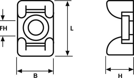 Bevestigingssokkel Schroefbaar Transparant HellermannTyton 151-24619 KR6G5-N66-NA-C1 1 stuks