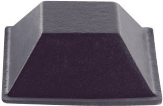PB Fastener BS-19-CL-R-7 Apparaatvoeten Zelfklevend, Vierkant Helder (b x h) 20.6 mm x 7.6 mm 7 stuks