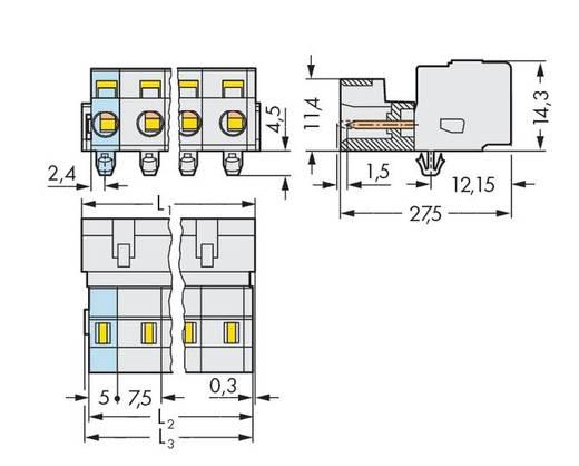 WAGO 723-604/018-034 Male header (standaard) 2080 Totaal aantal polen 4 Rastermaat: 7.50 mm 50 stuks