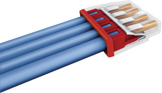 WAGO Lasklem Flexibel: - Massief: 0.5-2.5 mm² Aantal polen: 4 1 stuks Transparant, Rood