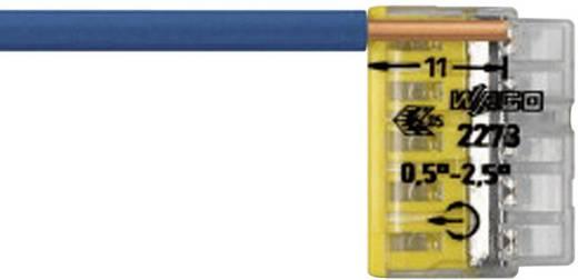 WAGO 2273-208 Lasklem Flexibel: - Massief: 0.5-2.5 mm² Aantal polen: 8 1 stuks Transparant, Lichtgrijs