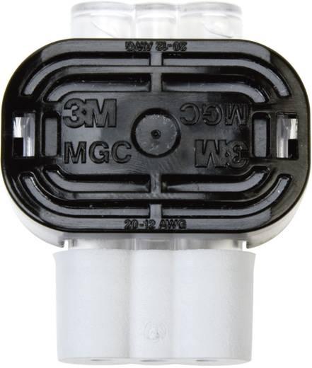 3M Zwakstroomverbinder Flexibel: 0.79-3.14 mm² Massief: 0.79-3.14 mm² Aantal polen: 2 1 stuks Grijs