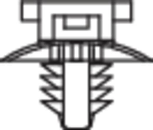 Kabelhouder met lamellenvoet Naturel KSS 541754 PHC-5 1 stuks