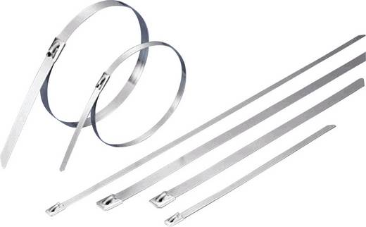 KSS BCT201L Kabelbinder 201 mm Zilver 1 stuks