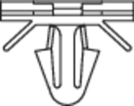 KSS 28530c322 PHC-1509 Kabelhouder Naturel 1 stuks