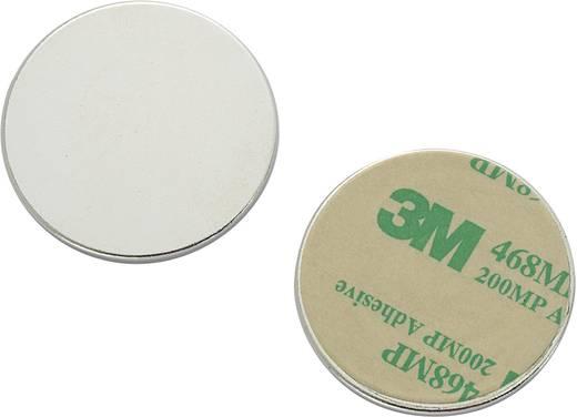 Conrad Components N35-3502 Magneetpad Zilver (Ø) 35 mm Inhoud: 1 stuks