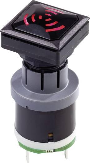Signaal Geluidsontwikkeling: 85 dB Spanning: 24 V Interval Schlegel OKJNSGL+SGILR-24V 1 stuks
